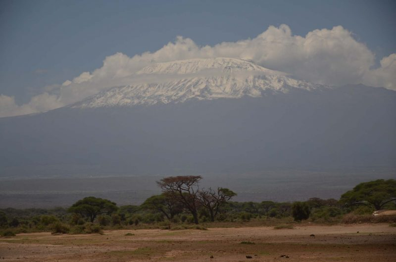Photo by Paula Kahumbu of Mt Kilimanjaro from Amboseli.